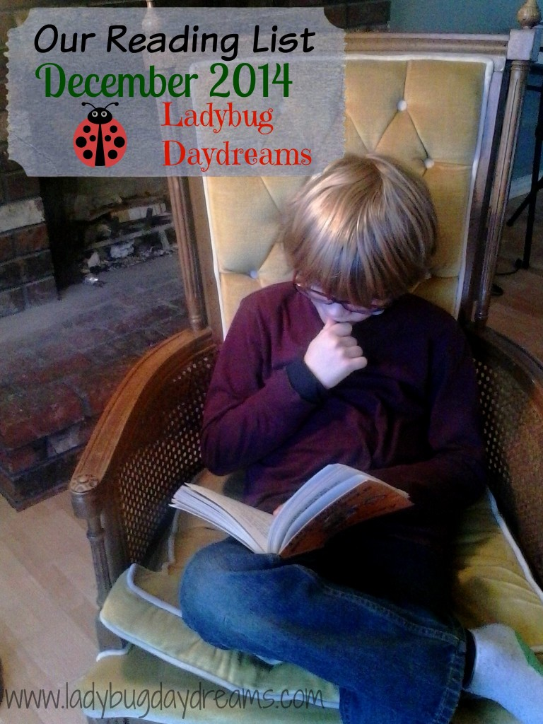 December 2014 Reading List - Ladybug Daydreams