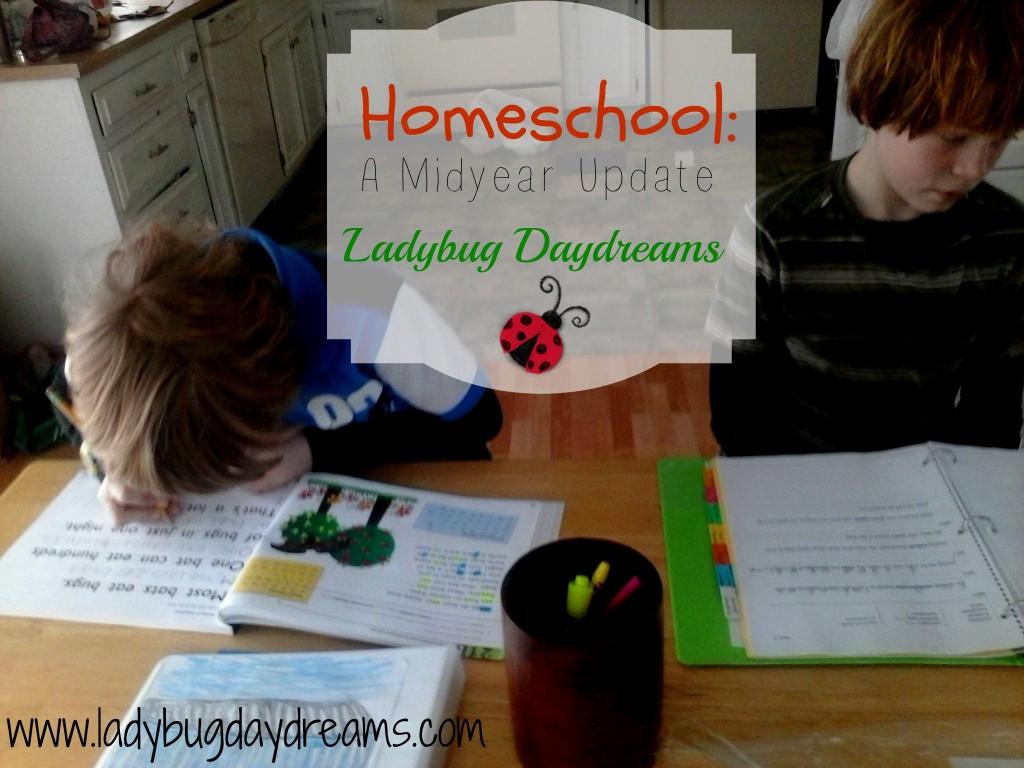 School for blog