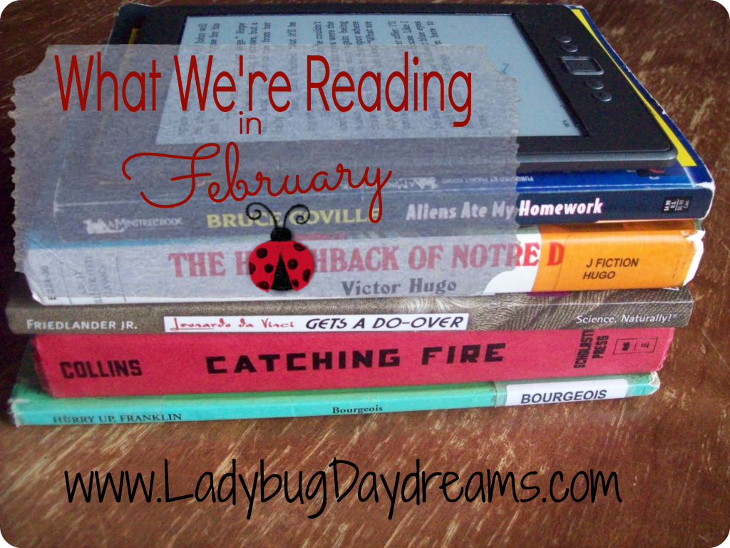 What We're Reading in February | Ladybug Daydreams