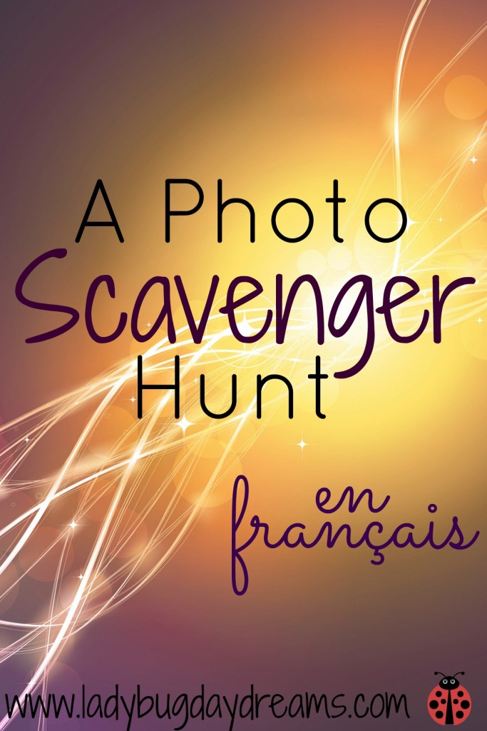 A Photo Scavenger Hunt in French | Ladybug Daydreams