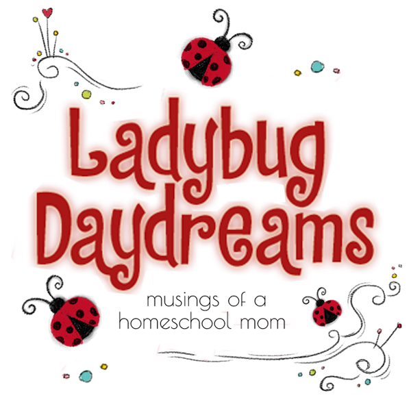 Ladybug Daydreams