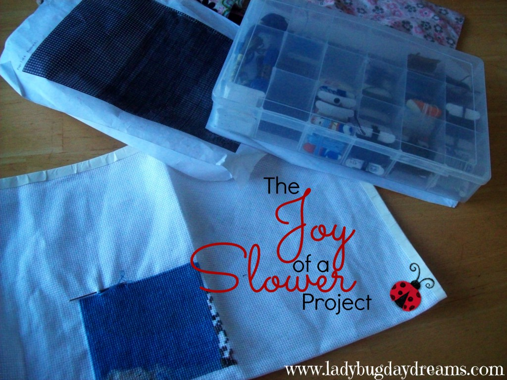 The Joy of a Slower Project | Ladybug Daydreams