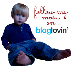 bloglovin2