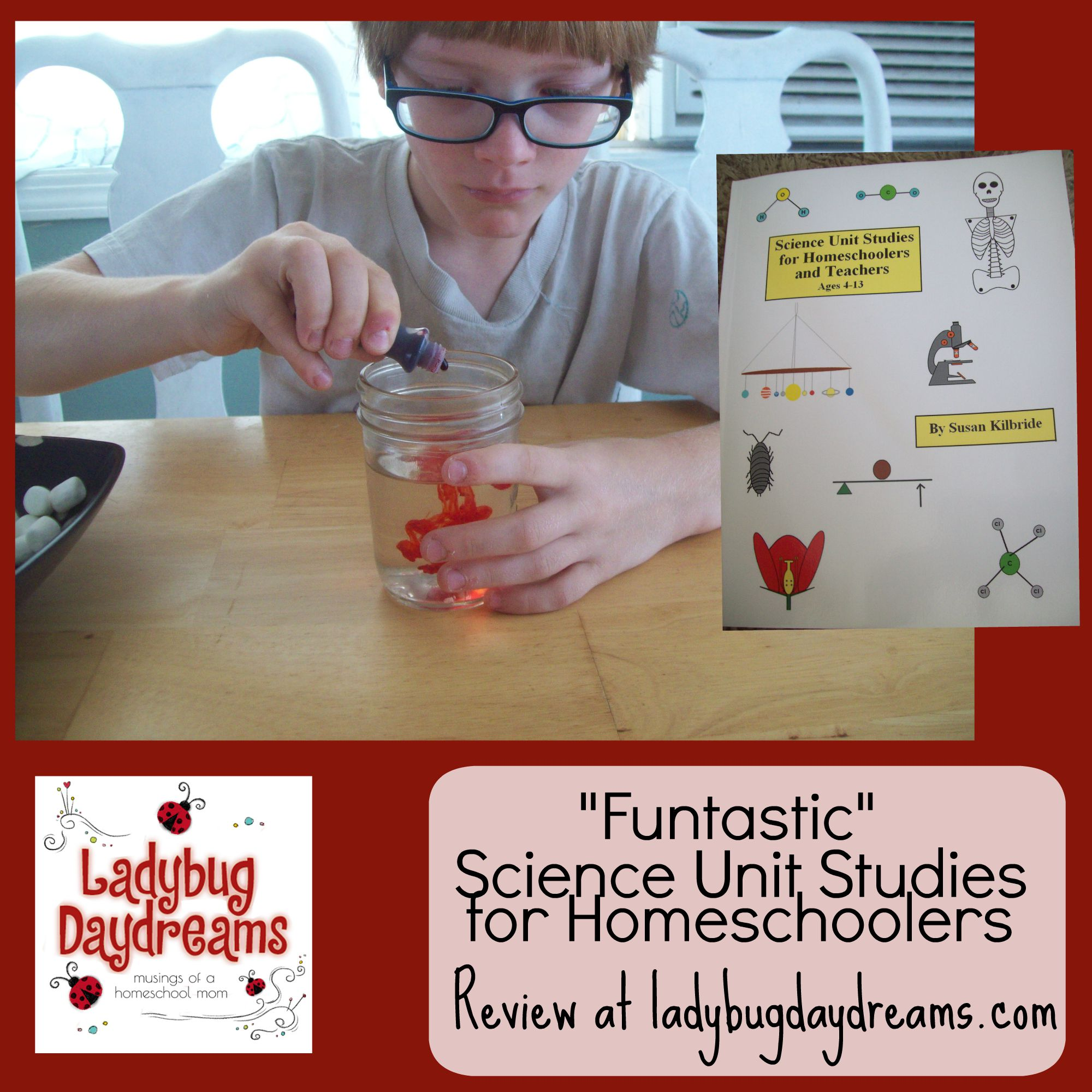Funtastic Science Unit Studies for Homeschoolers review at Ladybug Daydreams