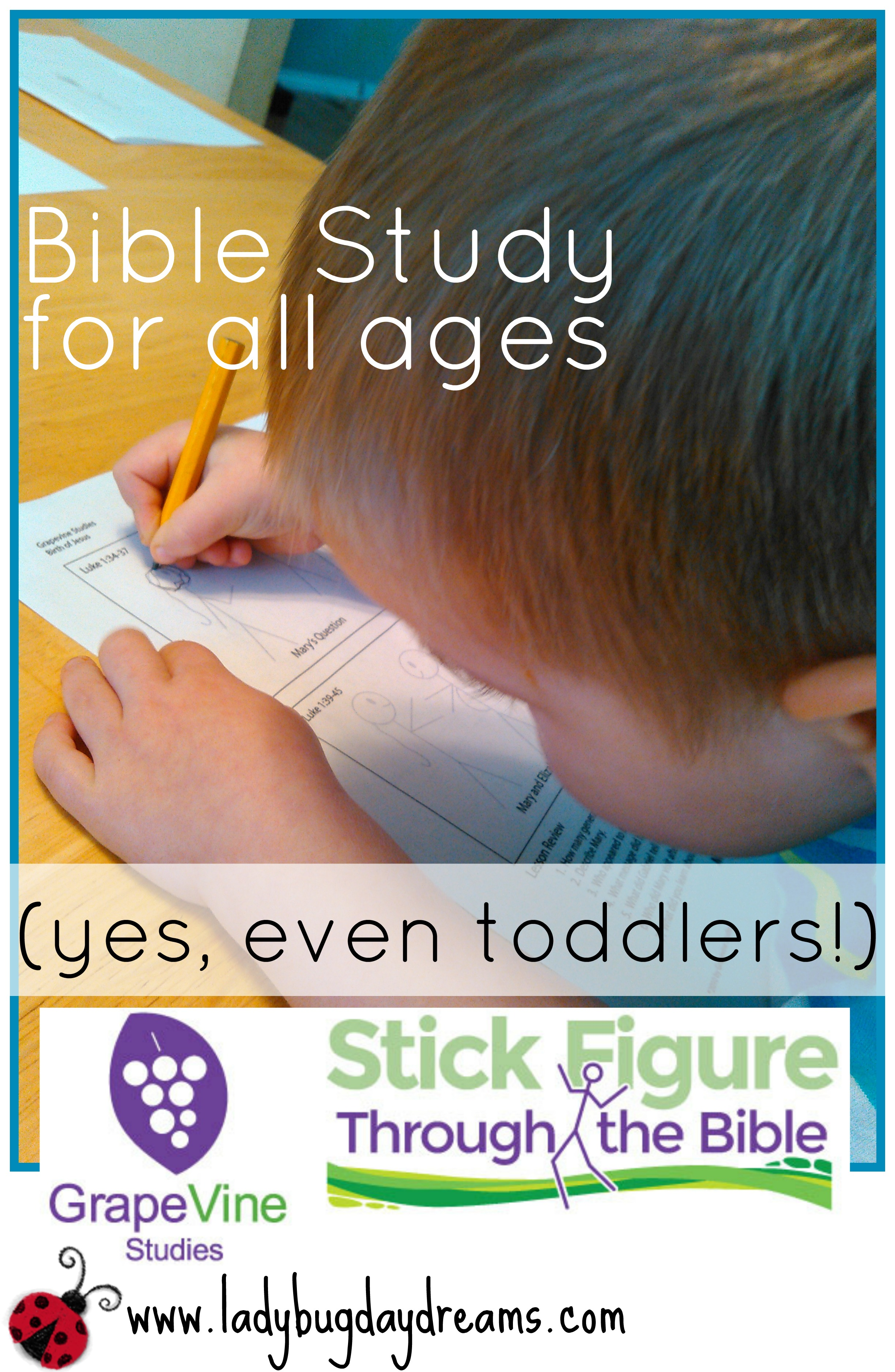 GrapeVine Bible Study for all ages