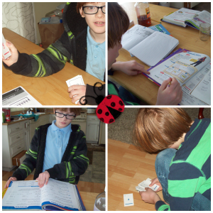 A Day in our Homeschool collage