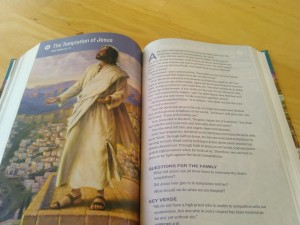 One of the devotional spreads.