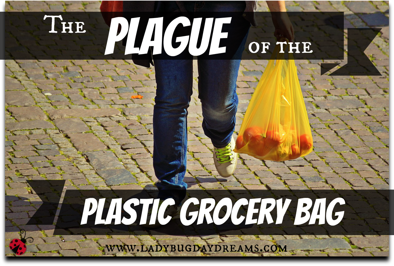 the plague of the plastic grocery bag | ladybug daydreams