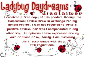 ladybug-disclaimer-review-crew-copy