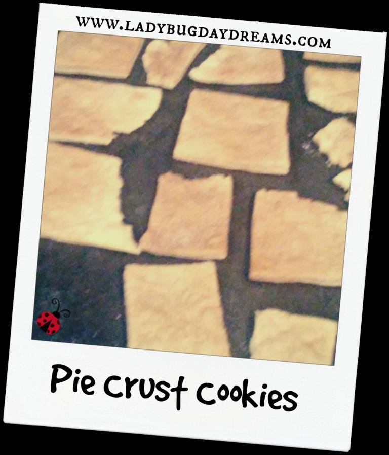 Pie Crust Cookies Ladybug Daydreams