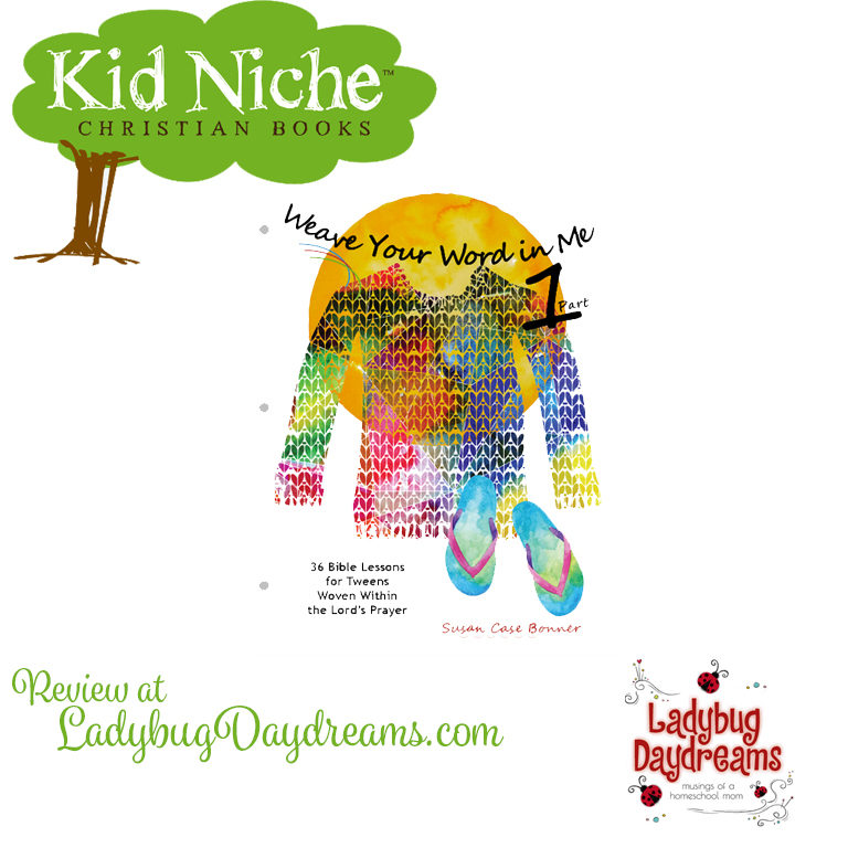 kid niche review