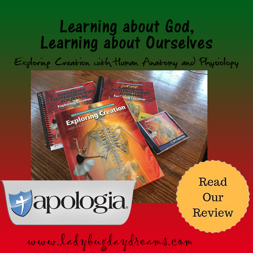 apologia review