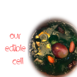 edible cell