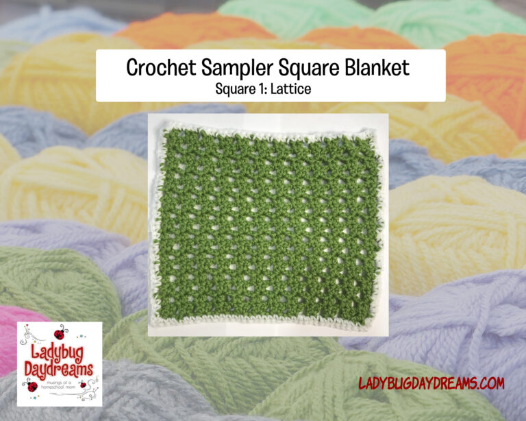 sampler blanket square 1