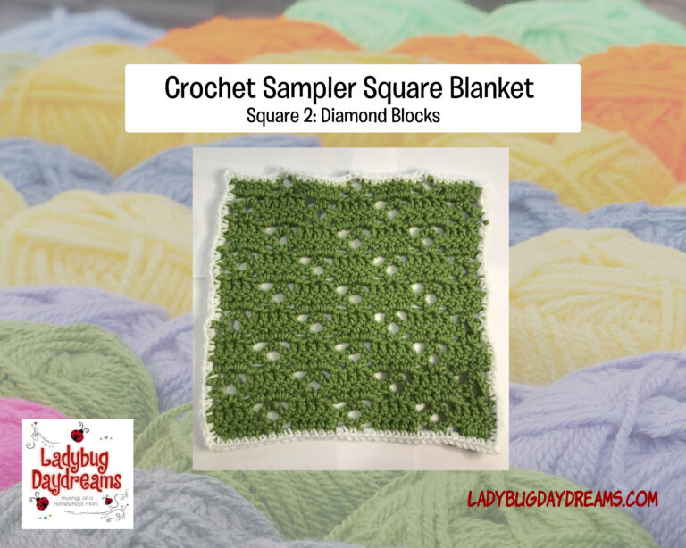 sampler blanket square 2